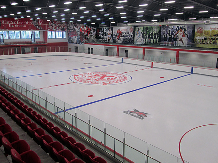 Custom Ice Rinks Arenas