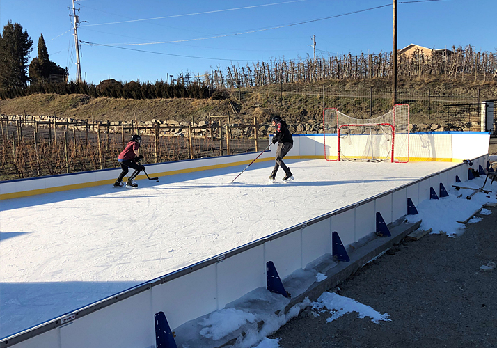 24' x 50' Portable Outdoor Residential Rink